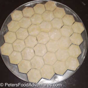 These Russian dumplings are so much quicker with this shortcut using a Pelmenitsa Mold! Filled with turkey meat and onion with an Asian twist - How to make Pelmeni Siberian Ravioli using a Mold (Пельмени)