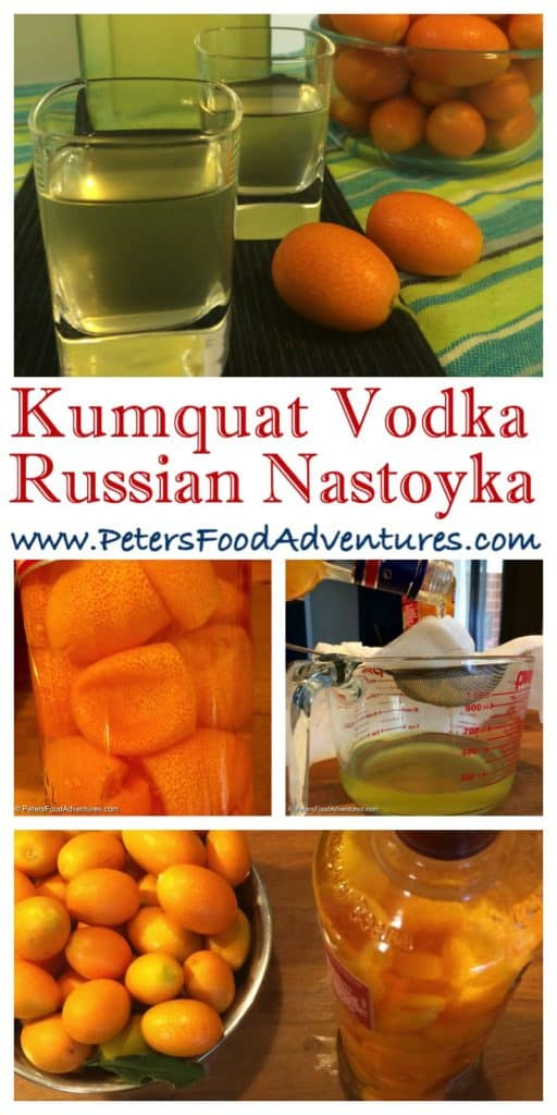 How to make an easy tincture from kumquats, or a Kumquatcello like Limoncello, The kumquat skin is full of with essential oils, anti-oxidants and vitamins, infused in vodka- Kumquat Nastoyka Tincture (настойка)