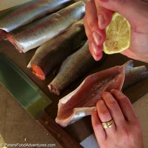 Lake Trout Recipe with Lemon, Chives and Vegetables