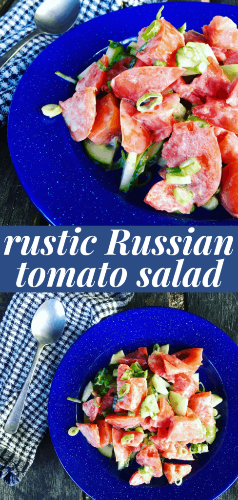 Russian tomato salad with cucumbers, green onion, whipping cream and fresh dill