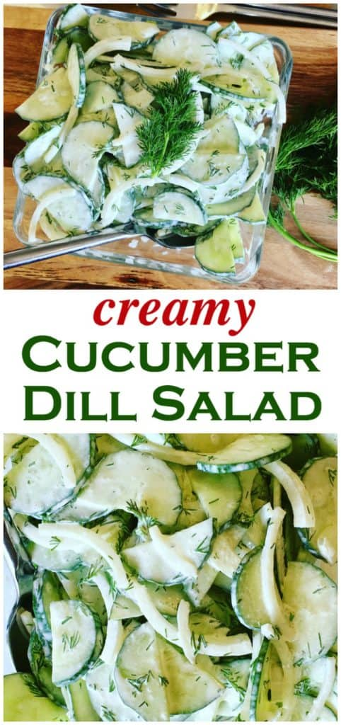 Creamy cucumber salad with sliced cucumbers, dill, onions and sour cream