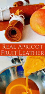 Apricot Fruit Leather