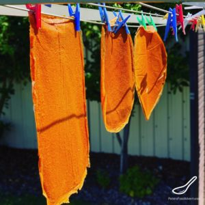 Drying Fruit Leather on a Clothesline