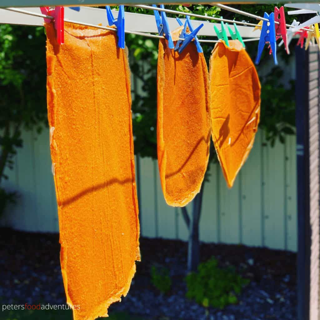 fruit leather drying on a clothesline
