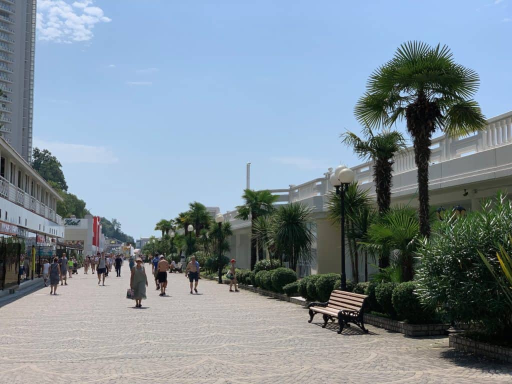 Primorskaya Ulitsa Sochi, palm tree lined street in Russia